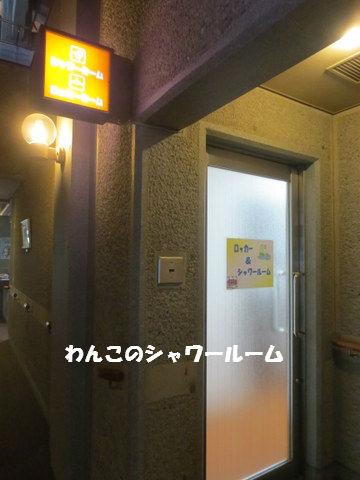 IMG_2759.jpg