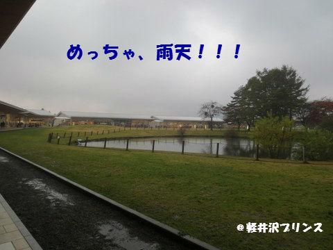 IMG_3131.jpg