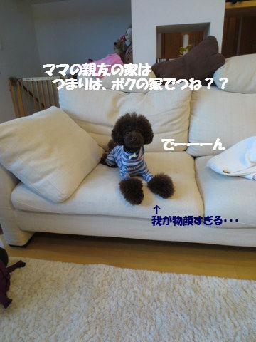 IMG_3641.jpg