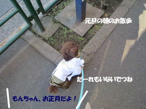 IMG_4117.jpg
