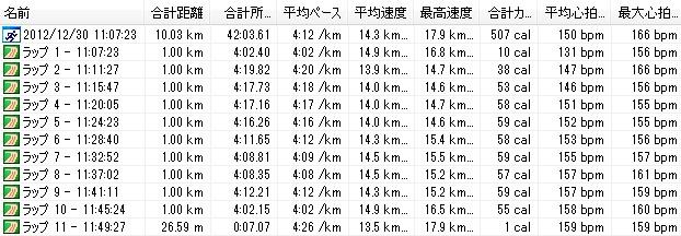 2012y12m30d_第442回月例川崎マラソン10km