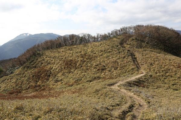 変化のある登山道