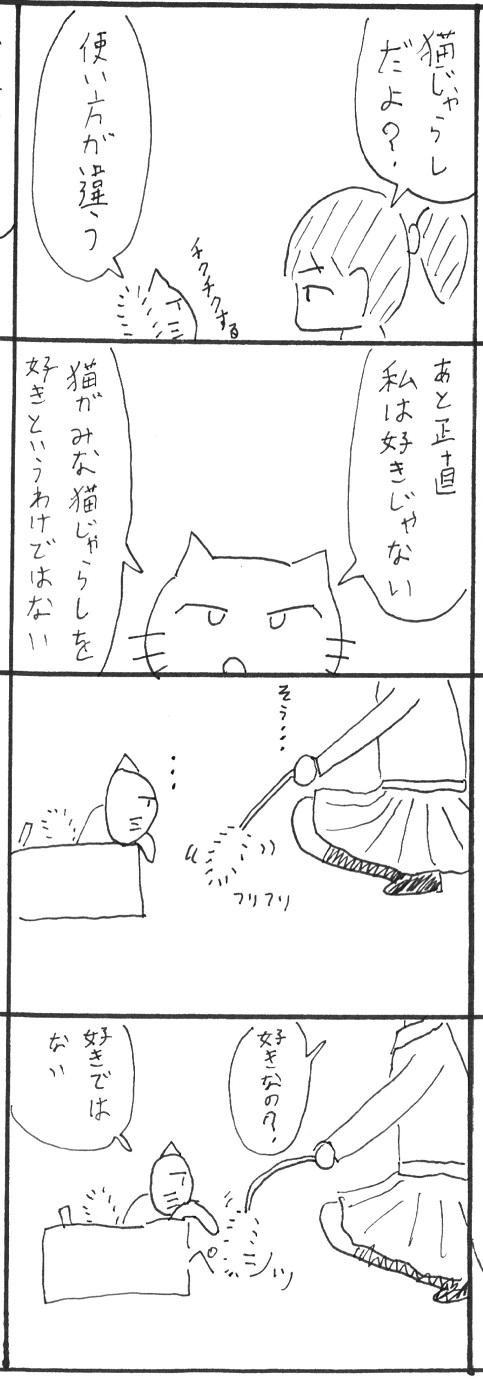 3_20130203221110.jpg