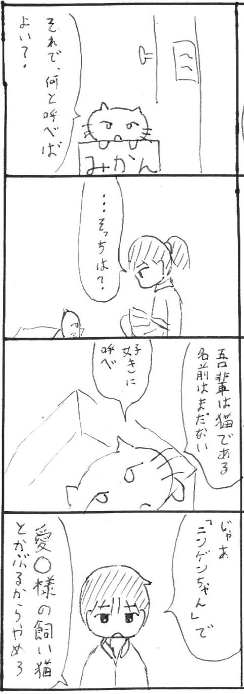 4_20130113112132.jpg