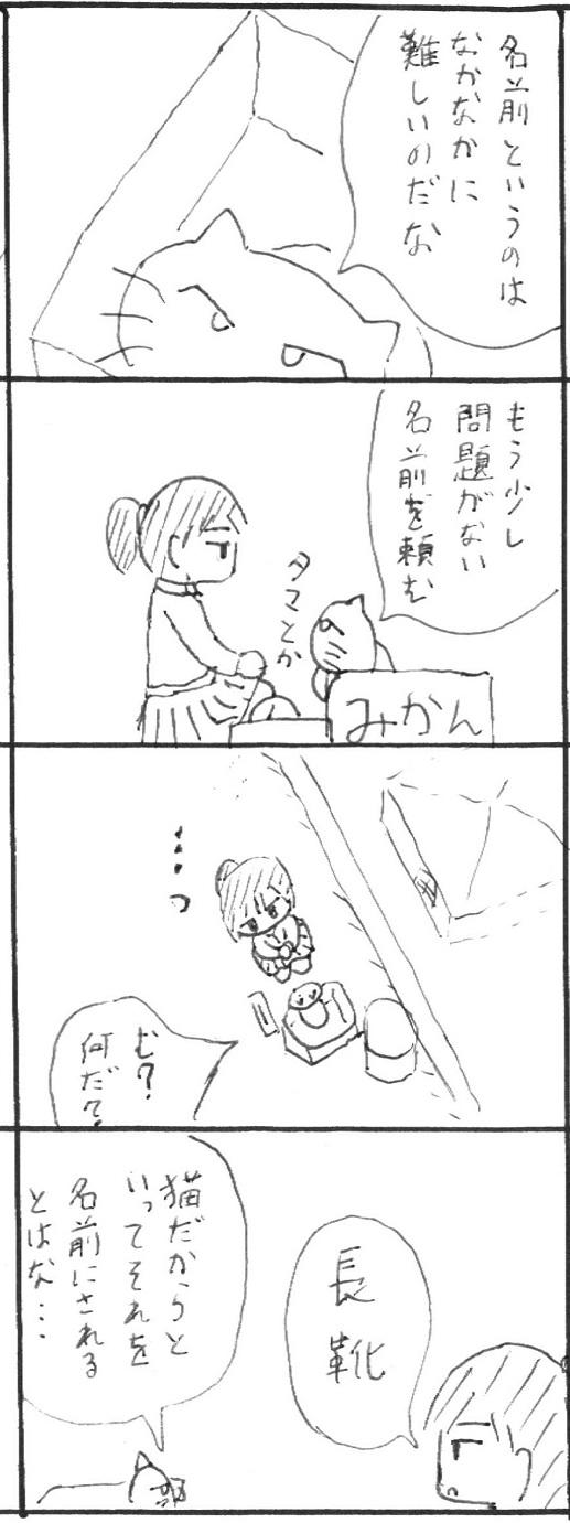 6_20130113112157.jpg
