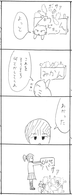 6_20130203221139.jpg