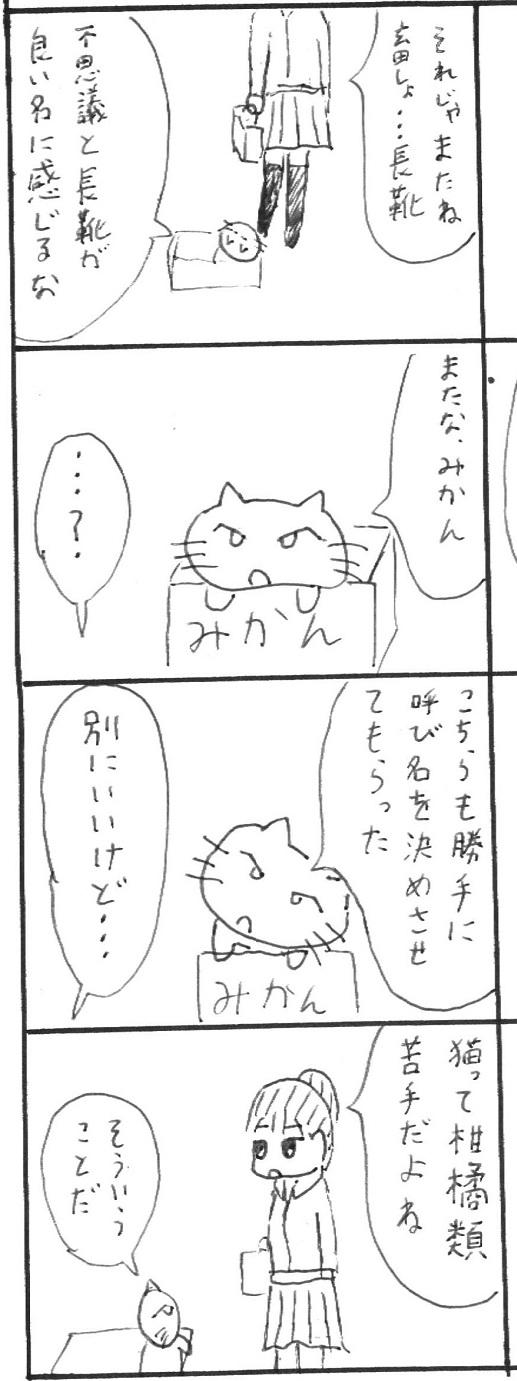 8_20130113112204.jpg