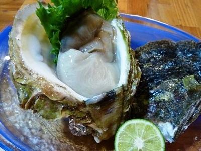 能登産の岩牡蠣