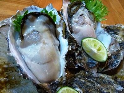 仙鳳趾産の岩牡蠣