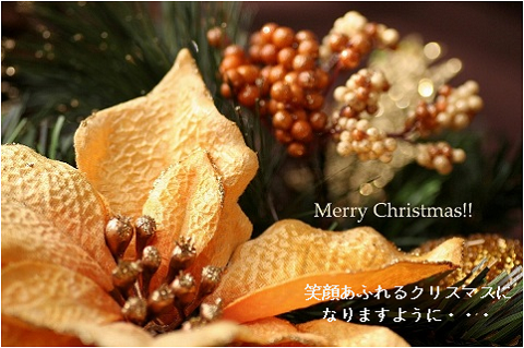 I wish you a merry christmas.