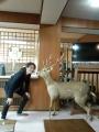 多武峰観光ホテル 藤原京 (4)