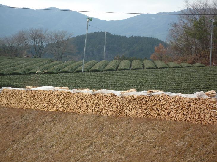 お茶と桧の村
