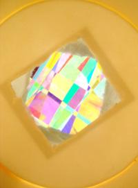 偏光板工作例 紙コップ万華鏡