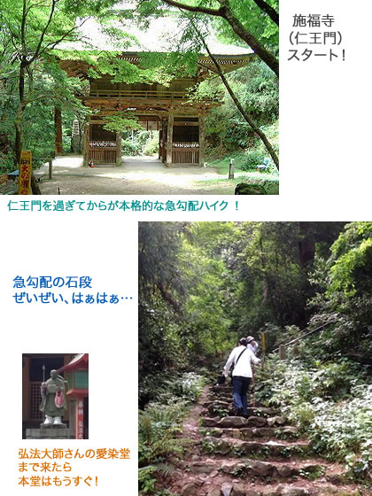 sefukuji_1.jpg