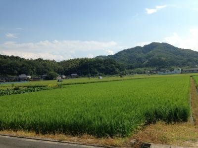 鳥取遠征 とりスタ周辺