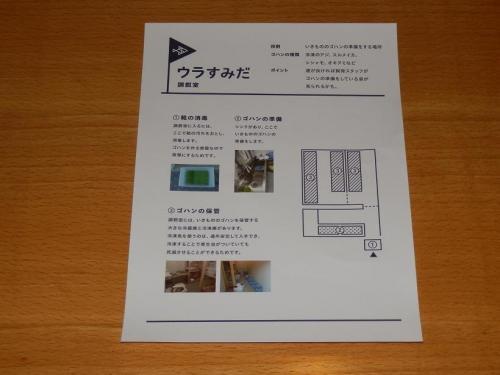 photo308-31-03.jpg