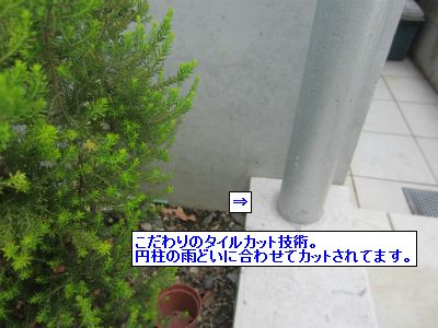 120527031.jpg