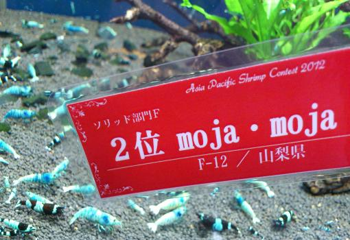 看板(moja-moja_convert_20121229151657
