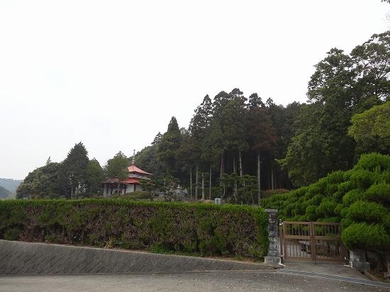 DSC01540.jpg