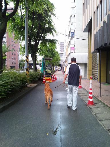 20120609朝散歩 2コピー2