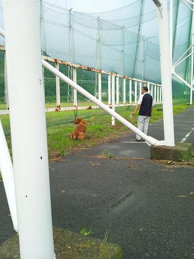 20120609朝散歩 6コピー9