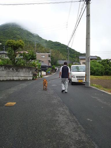 20120609朝散歩 3コピー10