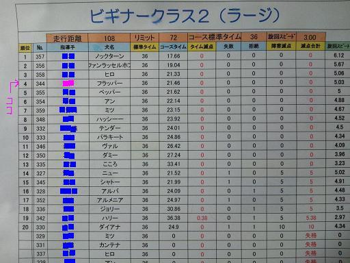 20121111ビギナー2結果コピー