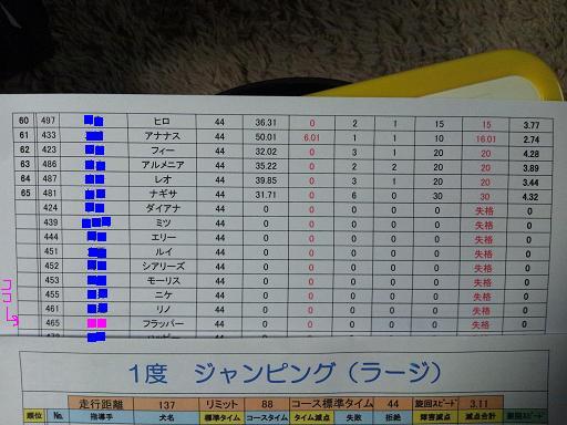 20121111ジャンピング1結果コピー