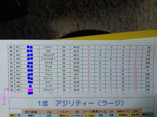 20121111アジリティー1結果コピー