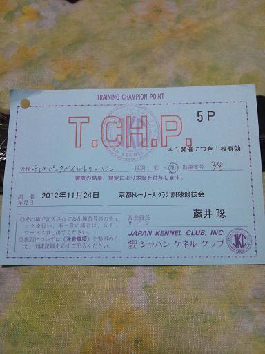 20121124クラブ服従競技コピー