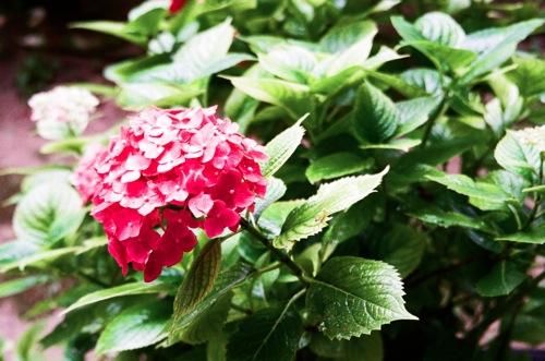 natura_09590023.jpg