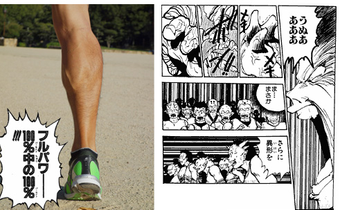 2013-0928-fukurahagi-full.jpg