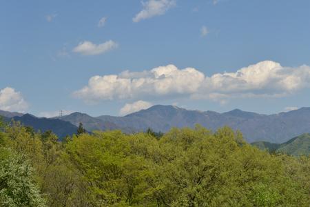 大菩薩嶺と新緑と