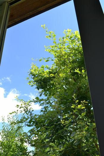 窓から空を12