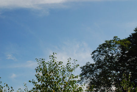 台風前の空12