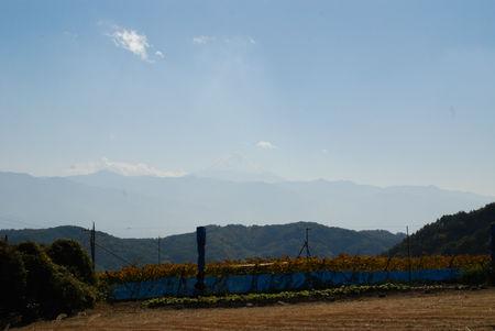 散歩道から・富士山27