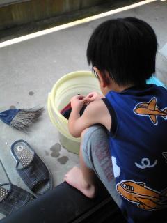 靴洗い王子