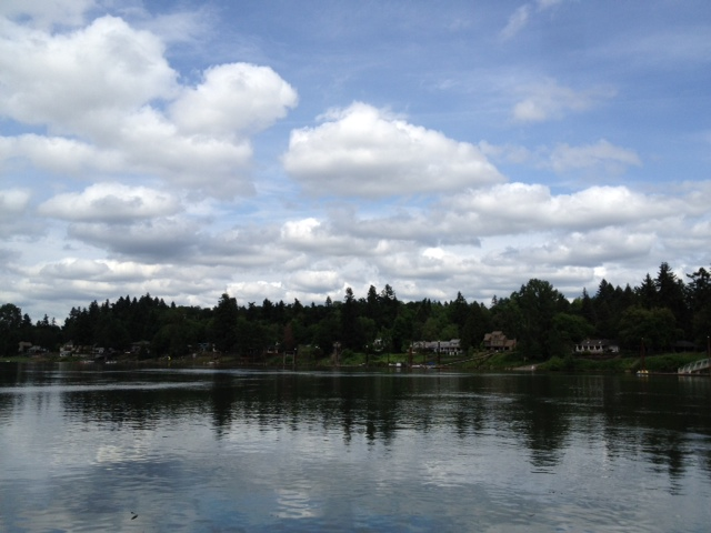2012-05-31 salmon5 (3)