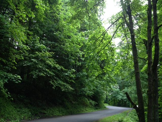 2012-06-06 (4)