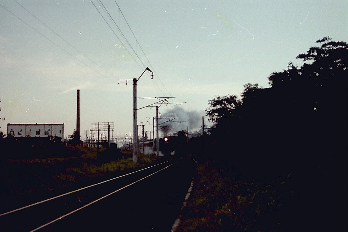 PICT0989s_20120809135453.jpg