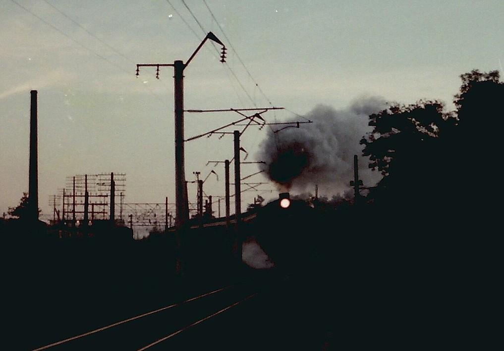 PICT0991s_20120809135452.jpg