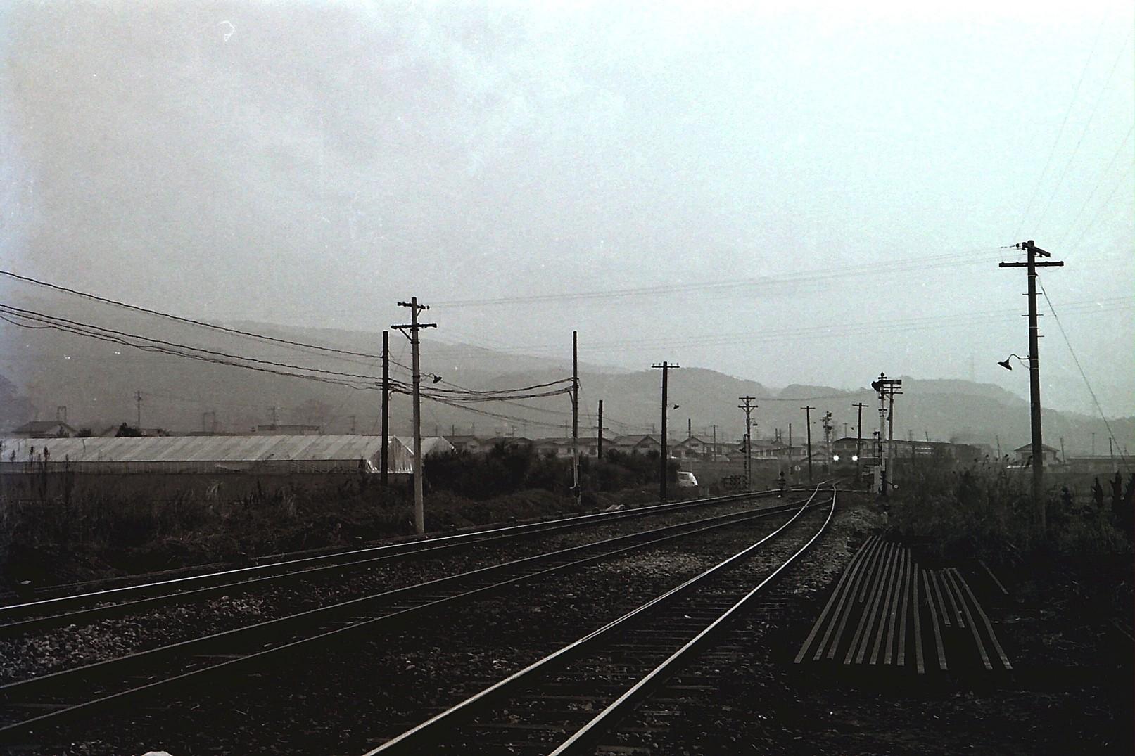PICT1343s.jpg