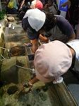 20120823新江の島水族館 (13)