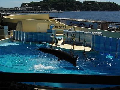 20120823新江の島水族館 (8)