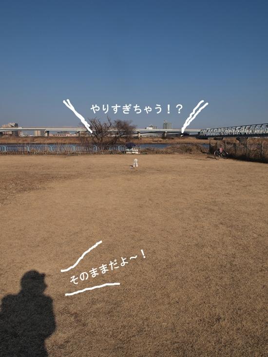 P1221990.jpg