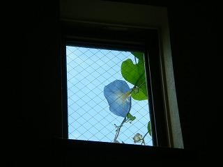 010_20121018221038.jpg