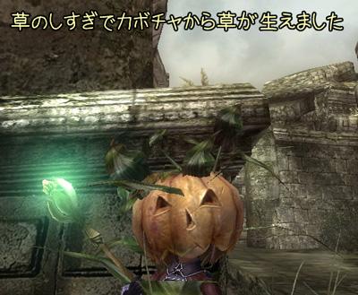 wo_20120624_1.jpg
