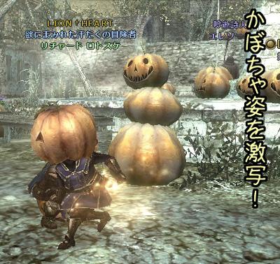 wo_20121005_5.jpg