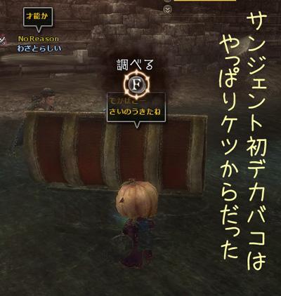 wo_20121206_1.jpg