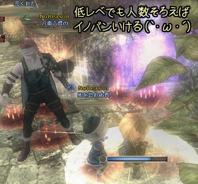 wo_20130108_2.jpg